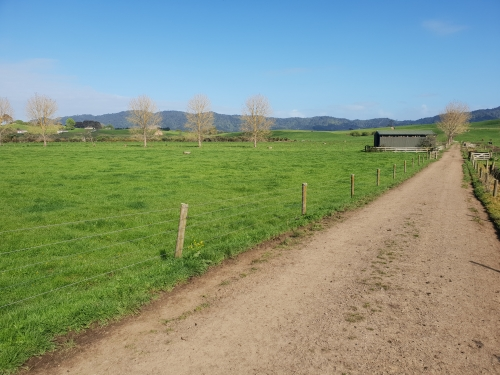 69 Hectare dairy unit
