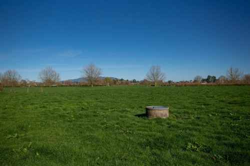 96 hectare dairy in sought after location